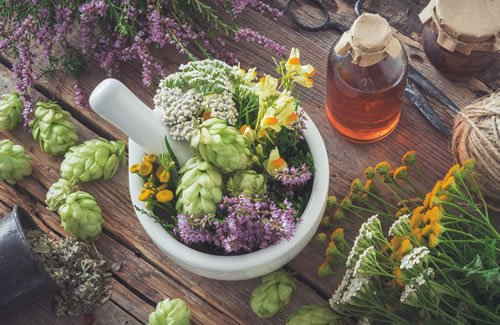 Herbal Medicine San Jose Integrative Medicine